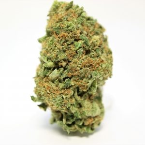 Bruce Banner (Small Buds) 1