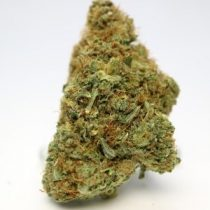Purple kush weed for sale online